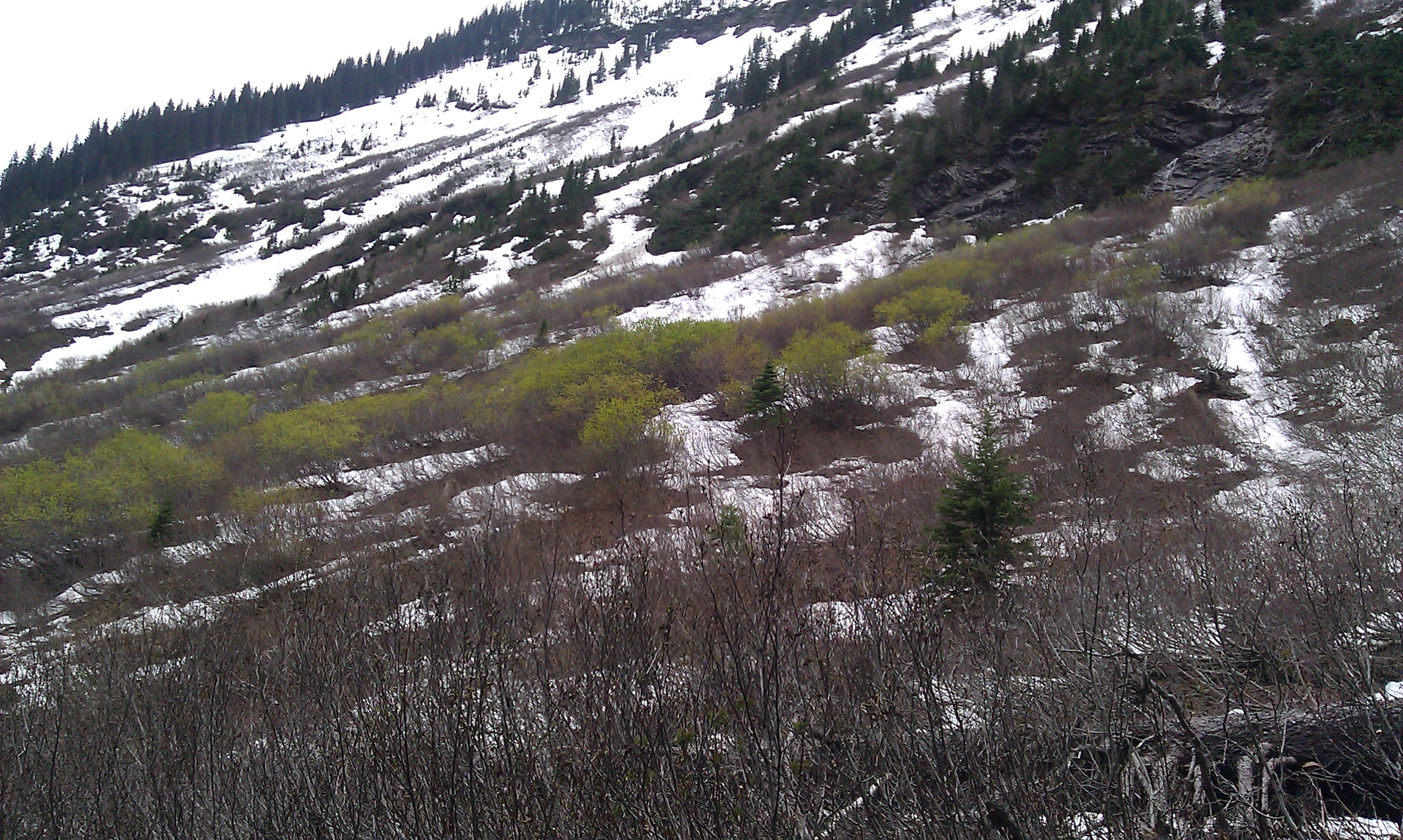 green lake mountain snow - photo #20